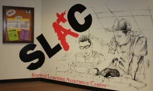 SLAC is a great place to get help on subjects that are giving you trouble.